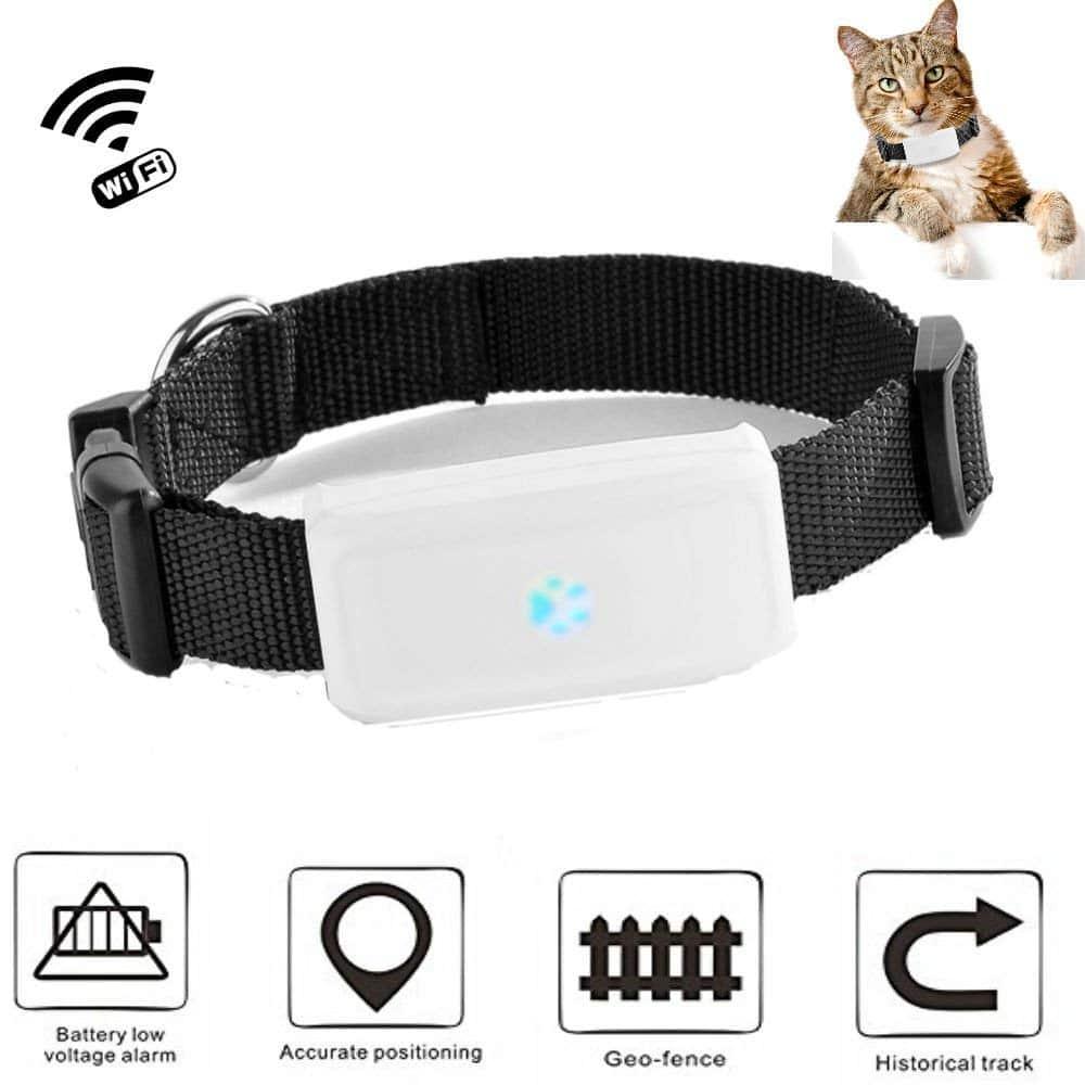 Pourquoi il vous faut un collier GPS pour votre chien